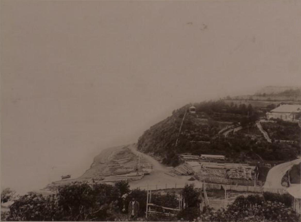 1890. Общий вид