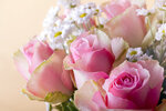 Bouquet of  pink roses 01.jpg