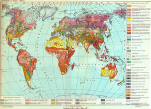Карта почв. Фото eatmo.ru