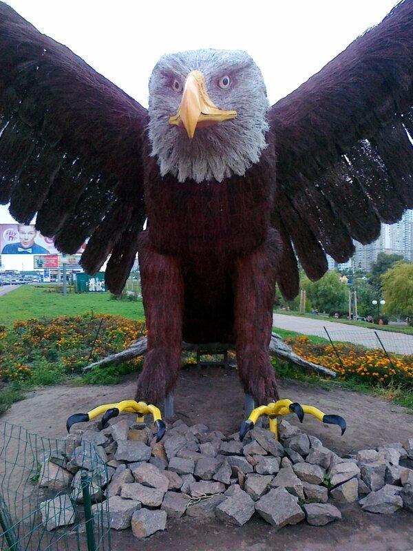 Орел на камнях
