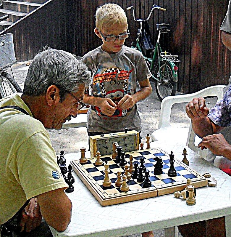 Шахматы, лето, в парке
