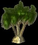 R11 - Palms - 2013 - 005.png