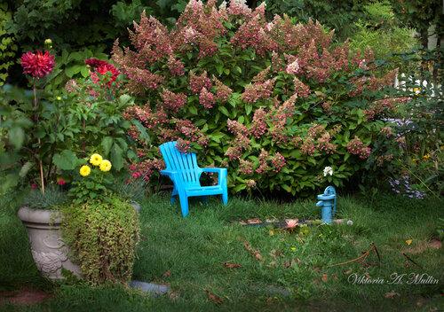 В мой сад приходит осень