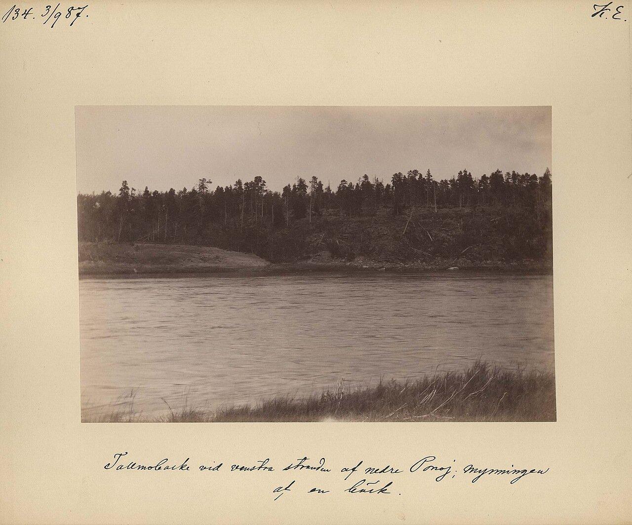 3.9.1887, в середине дня. Река Поной в районе Троице–Сергиева монастыря