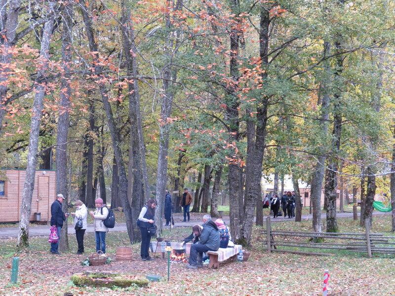 Квашение капусты в музее Витославлицы в Великом Новгороде