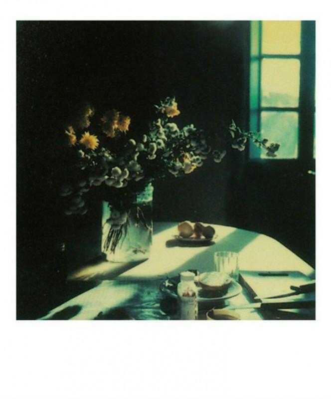 Неизвестные полароидные снимки Андрея Тарковского из личного архива (14 фото)