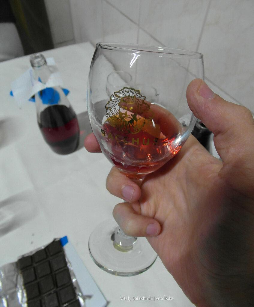 Вино комплемент от Бахус, дегустация на заводе