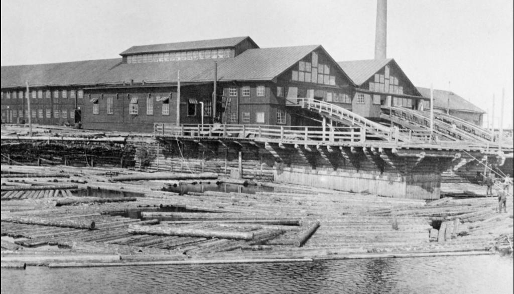 Норвежские предприятия по заготовке древесины на севере России
