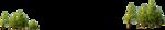 деревья - фон  1.png