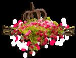RR_RoseGarden_SideCluster (4).png