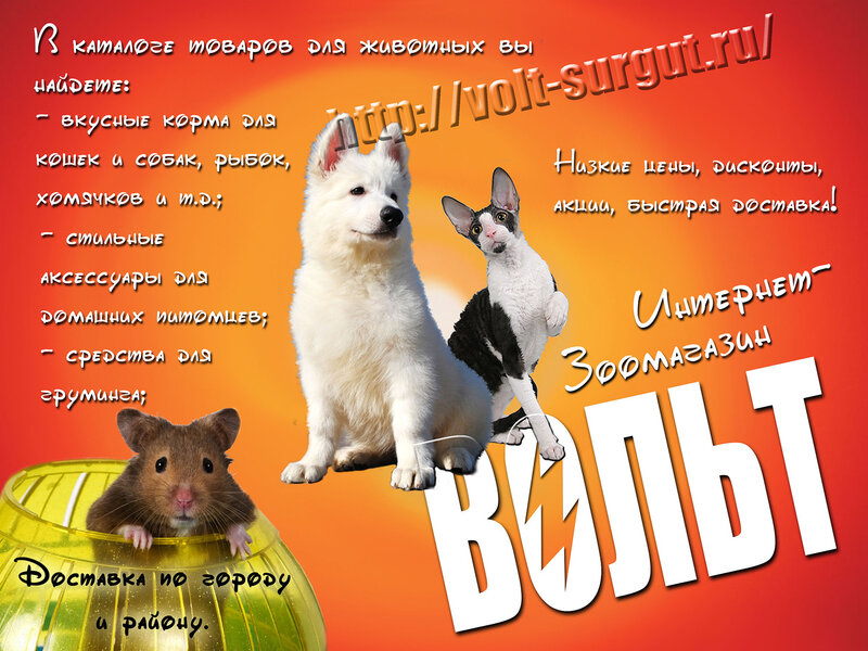 http://img-fotki.yandex.ru/get/9354/162753204.2e/0_dc661_f2b959d3_XL.jpg