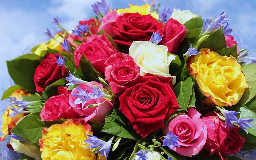 Цветы Букеты Фото Обои действующий стол