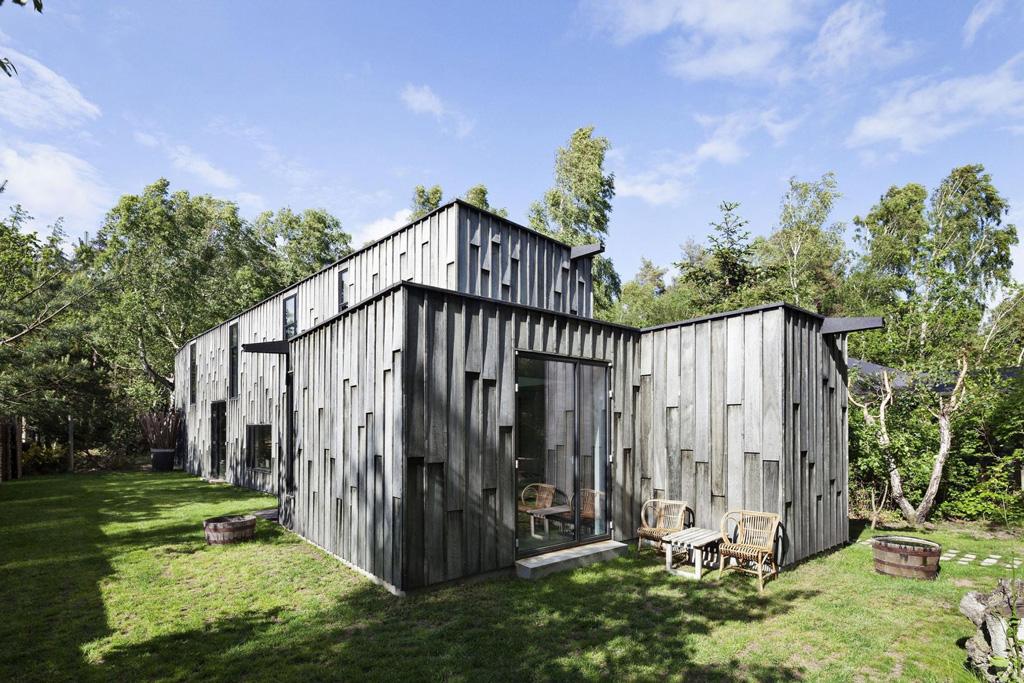 forest-house-5.jpg