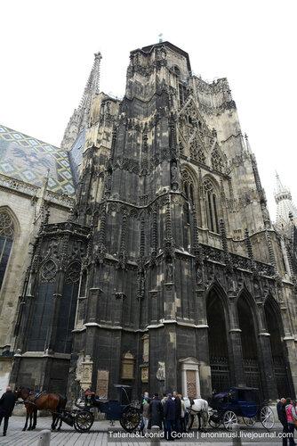 Собор святого Стефана. Вена