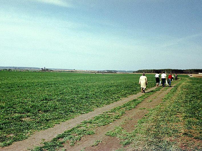 1977. Поле НИИОХа