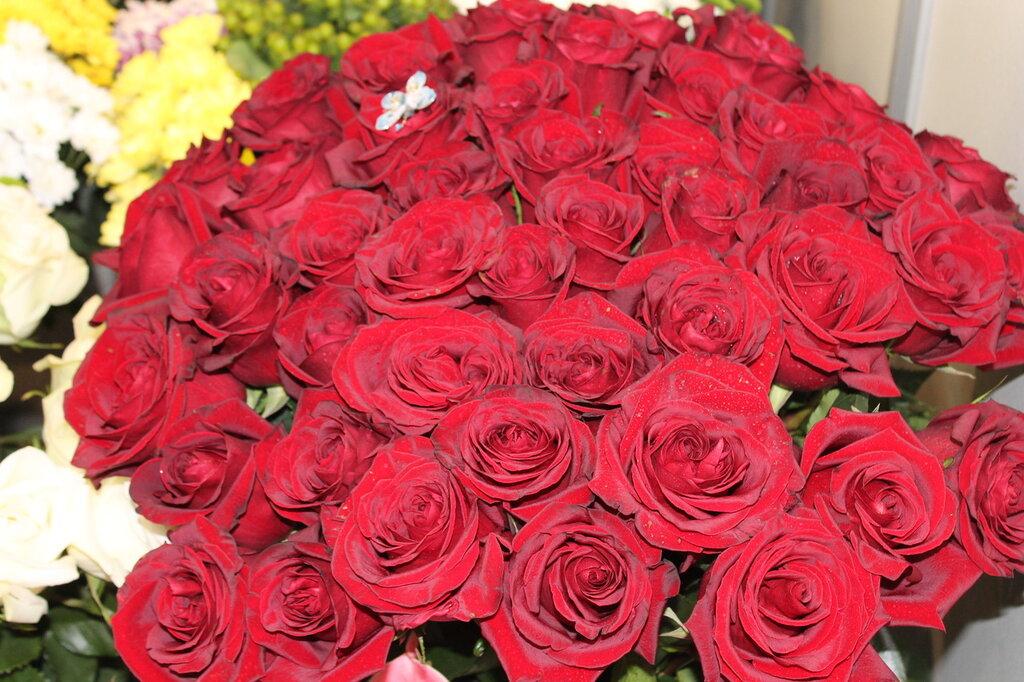 картинки где много розы сканируете старые