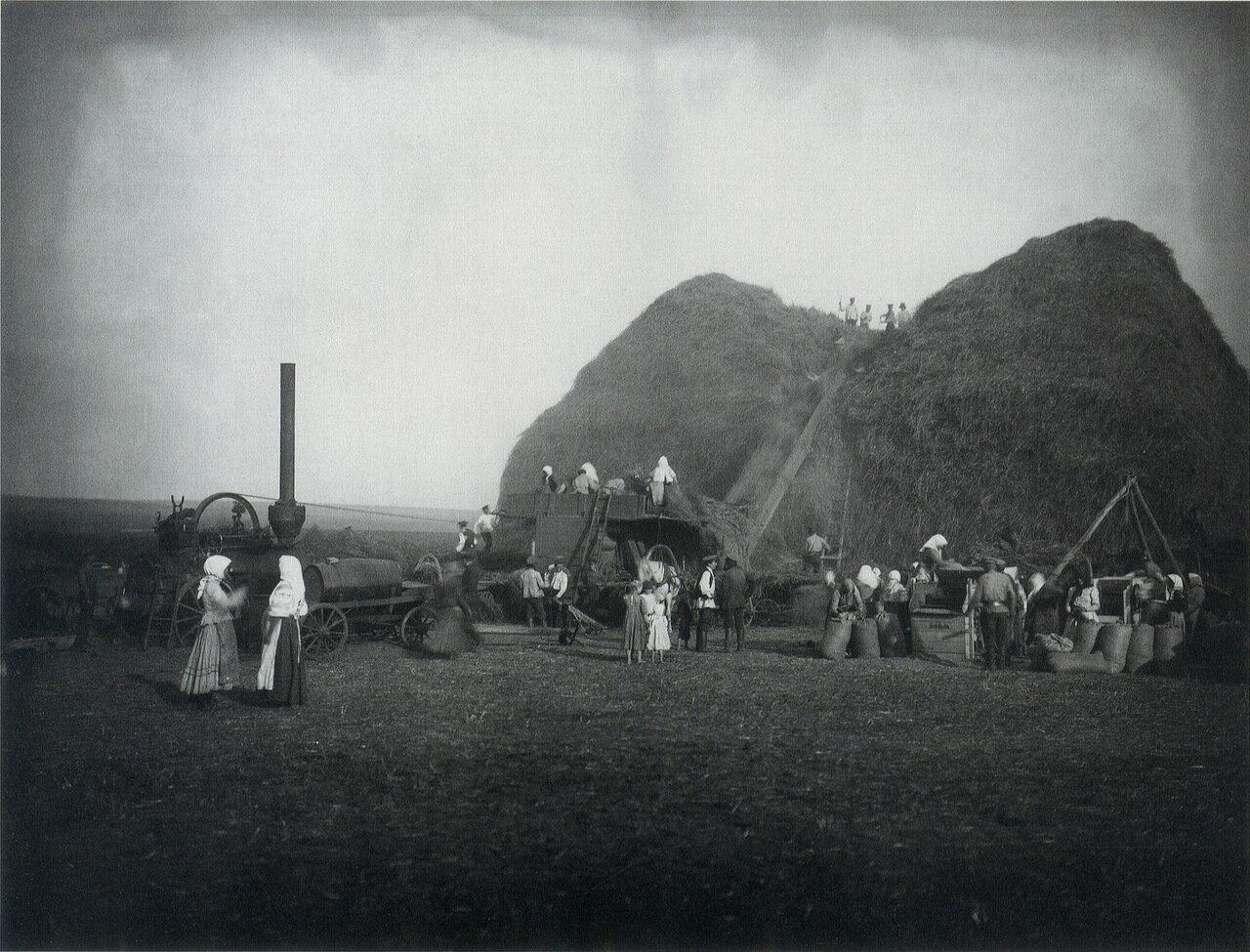 Молотьба в поле имения князя Ю. Кенига. 1910-е. Фото Я.В. Штейнберга