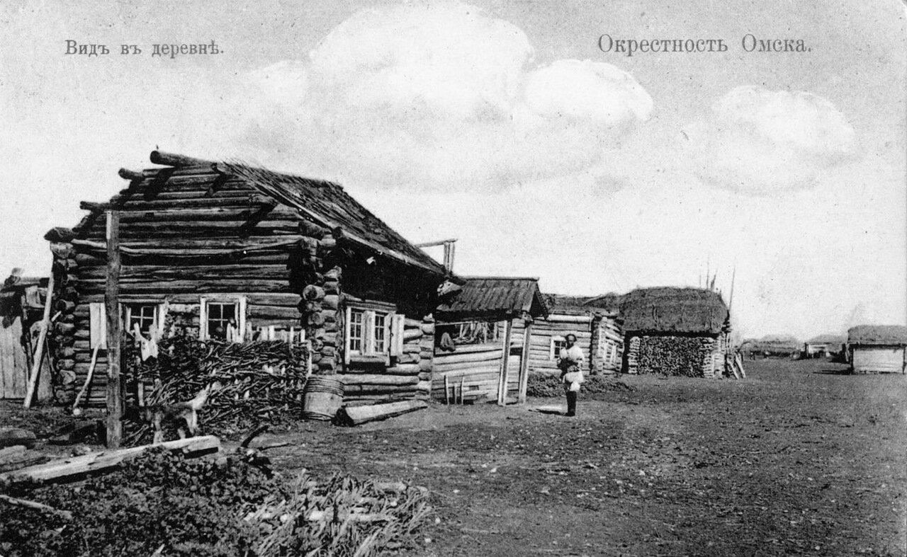 Окрестности Омска. Вид деревни