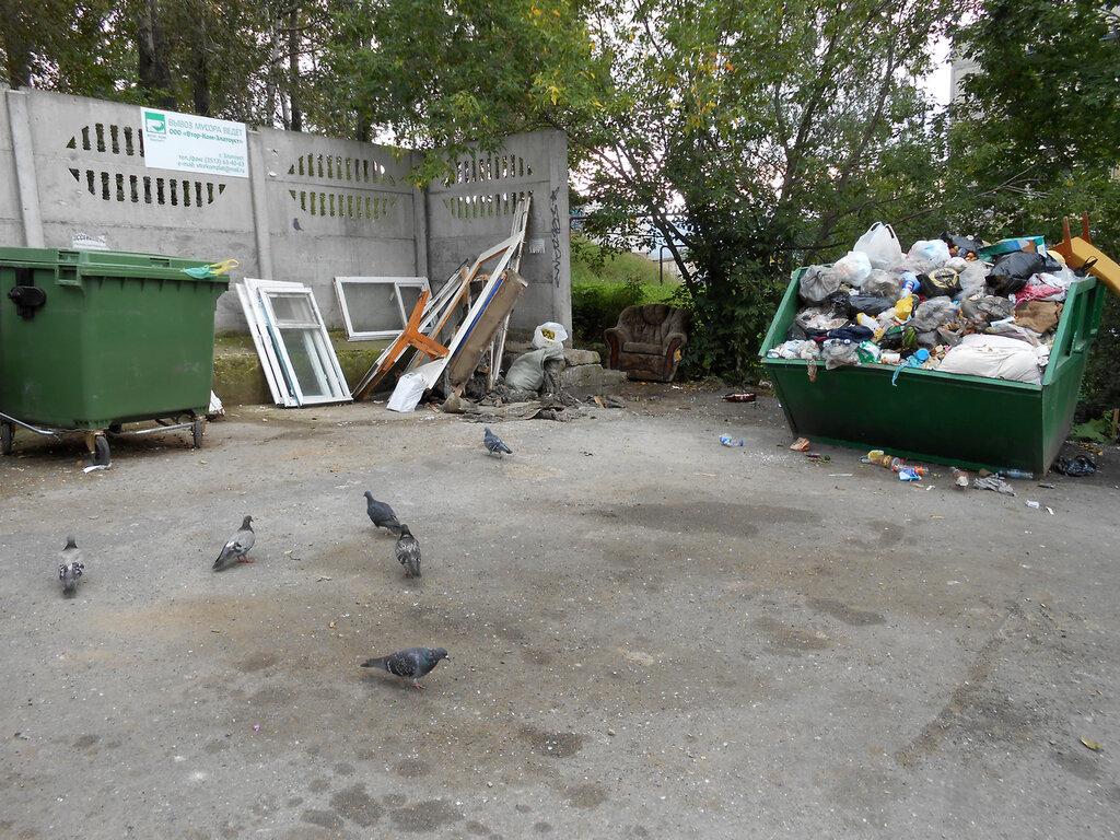 Разделение мусора. Златоуст