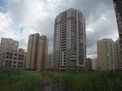 Ленинский пр. 80к1