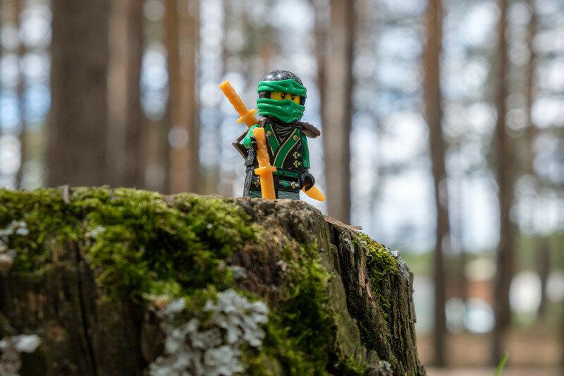 воин lego на старом пне