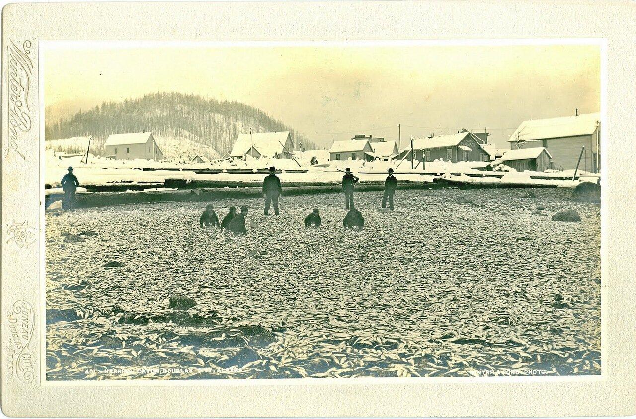 1895. Дети тлинкитов на берегу острова Дугласа, неподалеку от Джуно