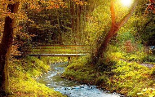 HD обои на рабочий стол природа и пейзаж