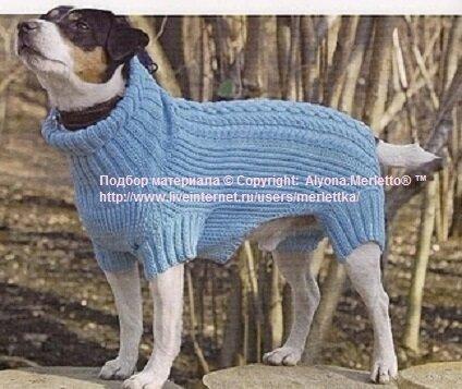 Вязание одежды собаки