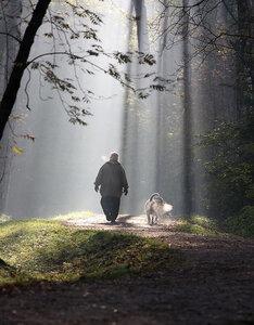 http://img-fotki.yandex.ru/get/9358/131884990.52/0_affdc_68f4317d_M.jpg