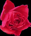 RR_MemoriesOfMom_RoseGarden_Element (61).png