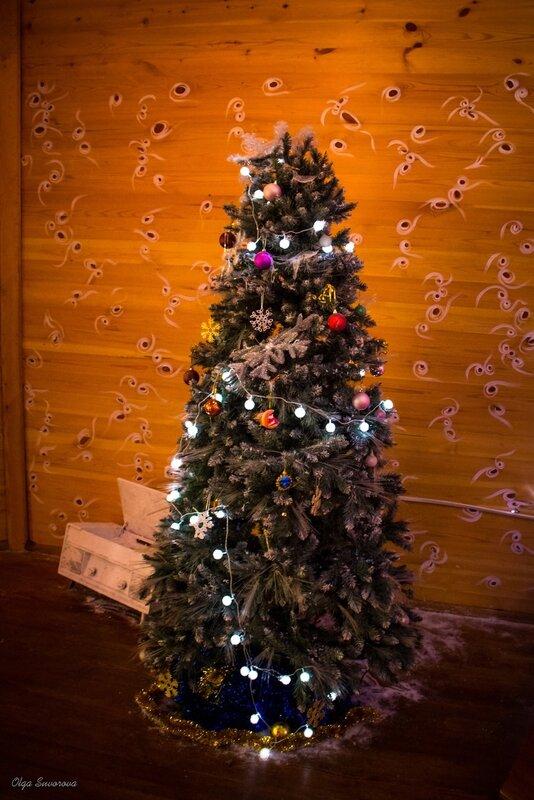 Поместье белорусского Деда Мороза 39