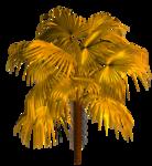 R11 - Palms - 2013 - 3 - 020.png