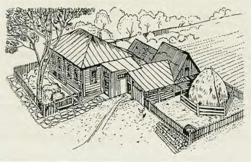 Русский дом, двор и хозяйственные постройки