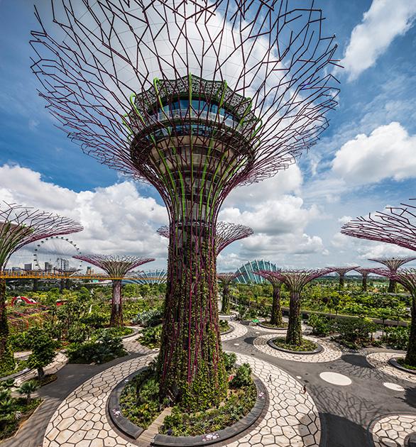 Сингапур: как живется в стране, признанной лучшей для иностранцев 0 145d75 d76af176 orig