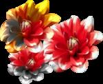 mentali-fleur013.png