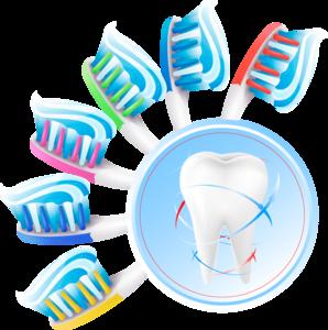зубы и щетки
