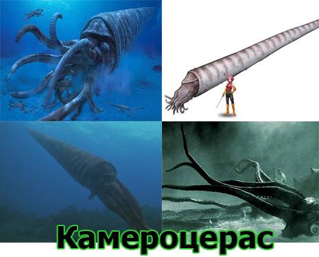 Самые большие животные в мире, существовавшие на земле (фото 4)