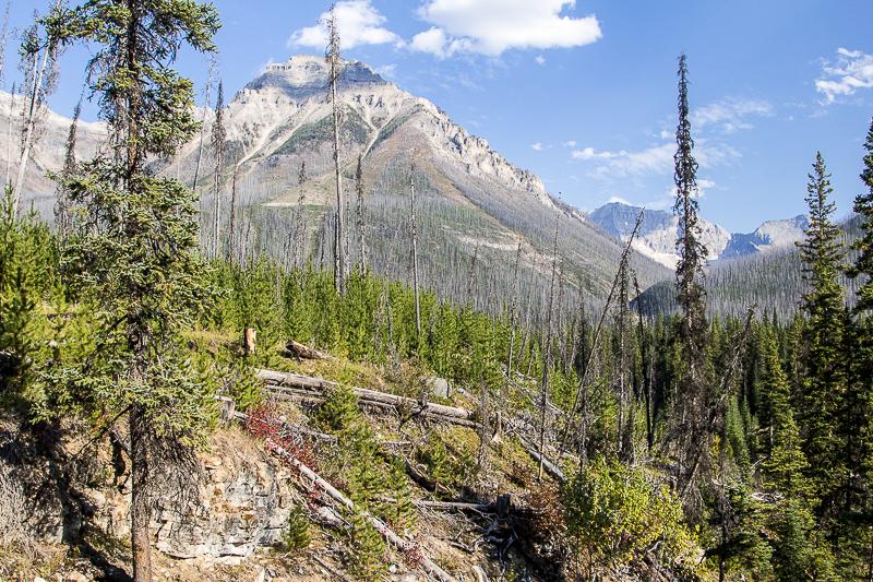 Поездка в Канаду Скалистые горы 1