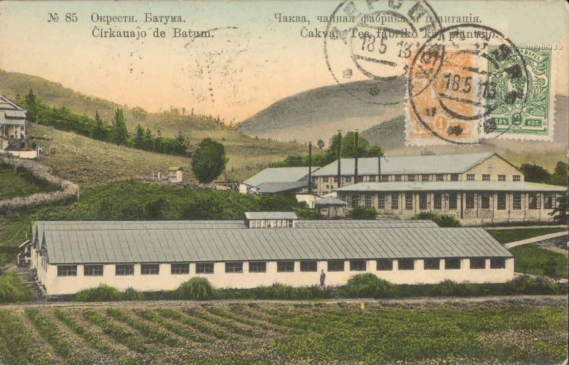 Чаква, чайная фабрика и плантация
