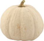 Holliewood_HauteHalloween_Pumpkin1.png