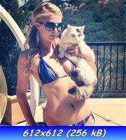 http://img-fotki.yandex.ru/get/9361/224984403.25/0_bb61c_4ee8a6ba_orig.jpg