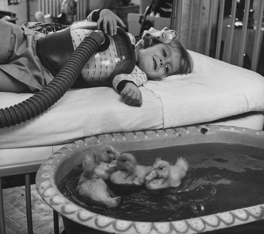 Животные, как средство детской терапии, 1956 год.