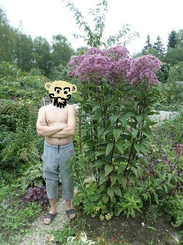 https://img-fotki.yandex.ru/get/9362/136093889.9/0_1a14ab_fb6a81ee_L.jpg