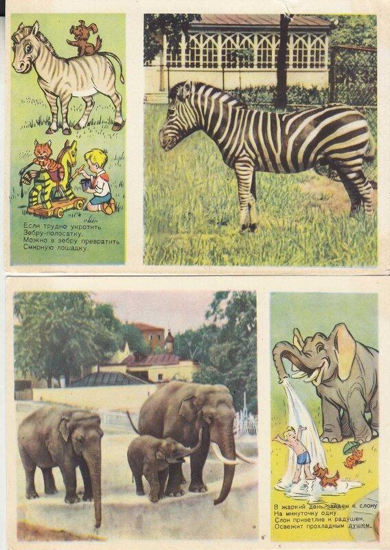 Открытка зоопарк, картинки