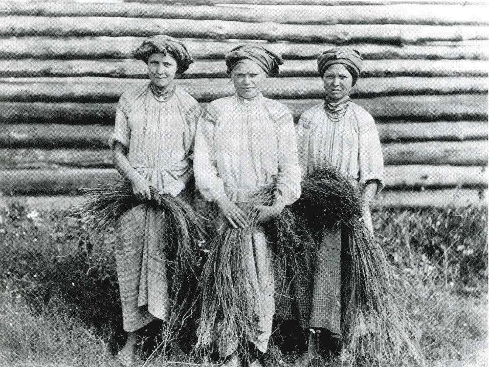 Крестьянские девушки лен дергают. Могилевская губ. 1903 г.