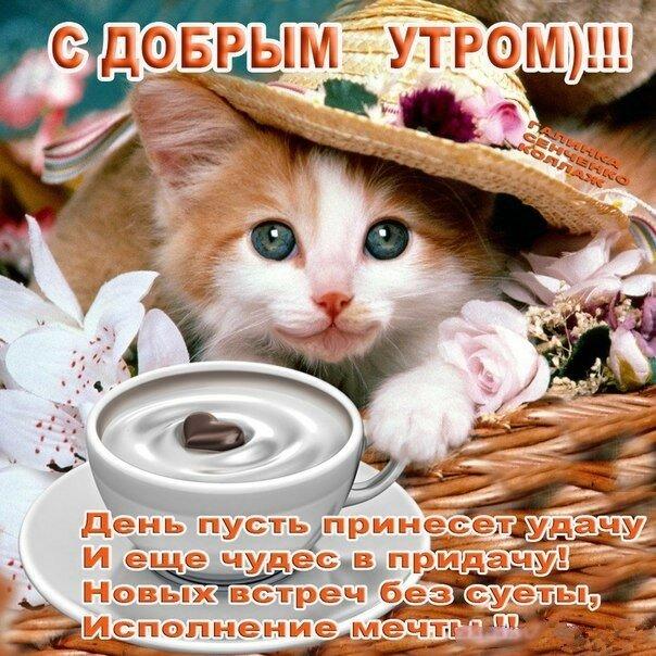 https://img-fotki.yandex.ru/get/93917/27156178.220/0_1ab3d3_e7e3fdd3_XL.jpg
