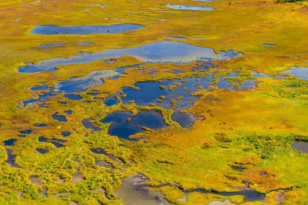 31. Вулканизм проявляется в виде большого количества грязевых котлов и вулканчиков, горячих ист