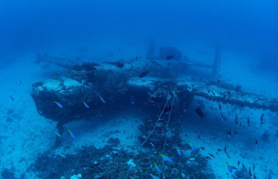 Как выяснилось, все самолеты были сброшены с бортов авианосцев в августе 1945 года, после успешной Т