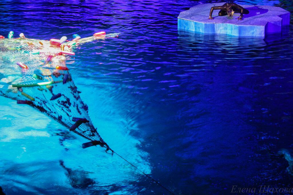 Олимпийский - бассейн-14.jpg