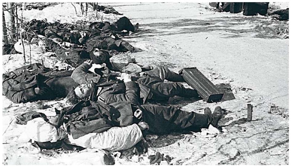 Погибшие фашисты. 1941